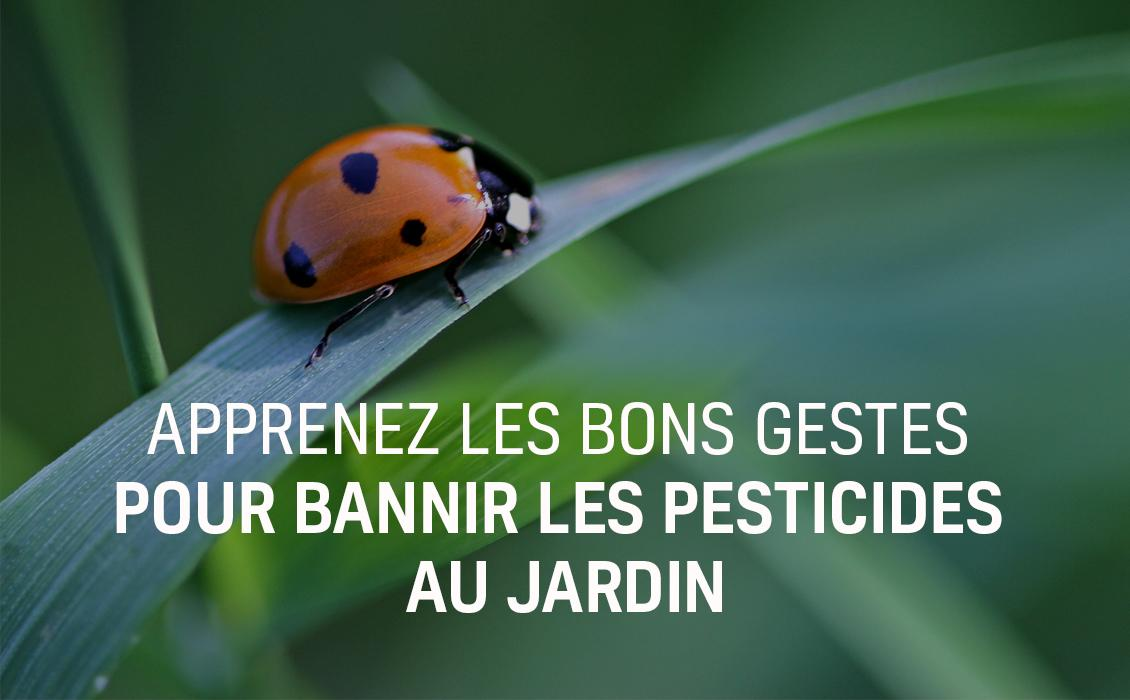 Semaine sans pesticides - SSP - 2019
