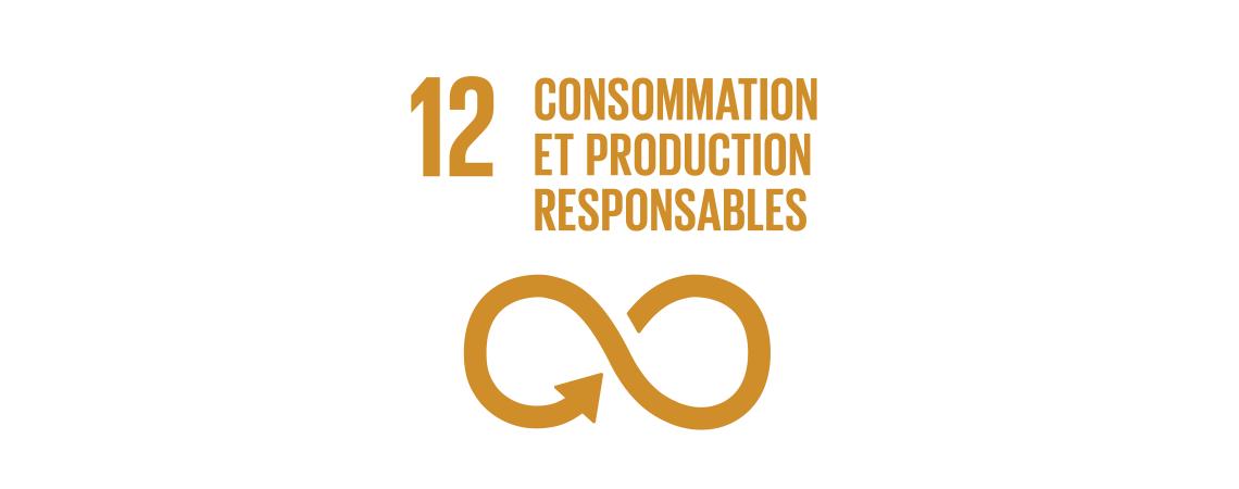 Logo des objectifs de développement durable : consommation et production responsables