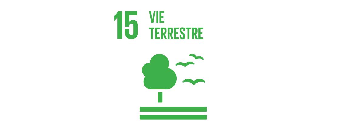 Logo des objectifs de développement durable : vie terrestre